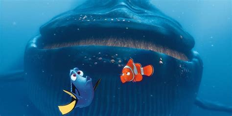 finding dory finding dory hd wallpapers of finding dory hd pics