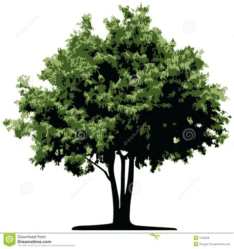 Tree Vector Stock Vector Illustration Of Elements Leafs 1763558 Ancestry Tree Stock Images Royalty Free Images Vectors