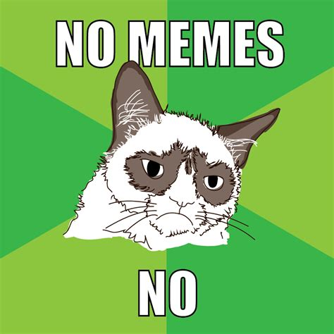 How About No Meme - no memes weneedfun