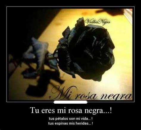 Imagenes Negras Con Frases | im 225 genes de rosas negras con frases imagenes de luto