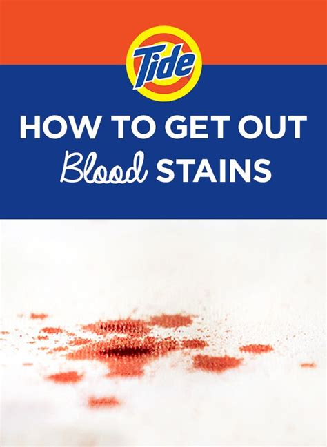 how to get blood out of upholstery how to get out blood stains 1 brush the excess stain off