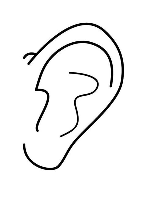 coloring page ear ears coloring pages coloring home