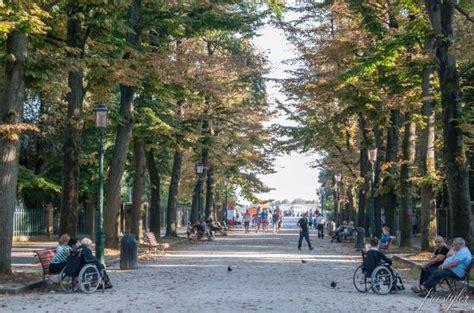 giardini pubblici venezia giardini pubblici foto di giardini pubblici venezia