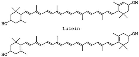 alimenti con luteina luteina e zeaxantina chimicamo org