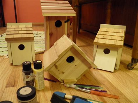 finch houses finch bird house plans birdcage design ideas