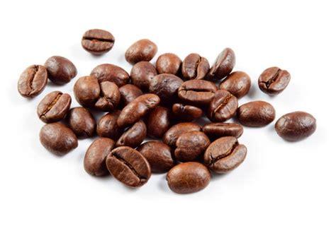 Biji Coffee biji kopi yang dibekukan terbukti hasilkan rasa kopi lebih enak