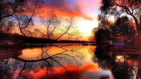 Rote Blätter Baum 4770 by Die 81 Besten Herbst Hintergrundbilder Hd