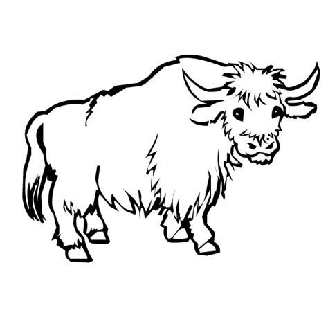 coloring page yak y yak little angels fun house