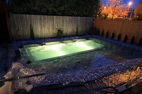 diy backyard pool how to build a natural swimming pond home design garden