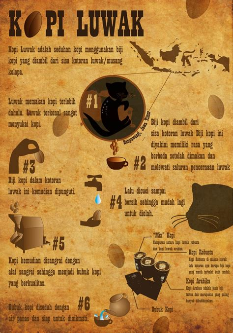 Coffee Luwak Indonesia 17 best images about animals on