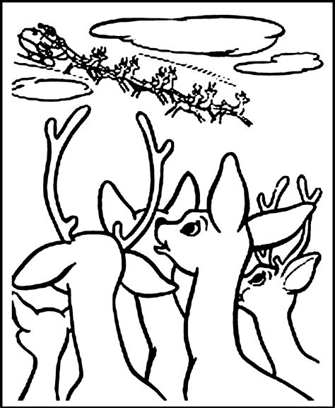 Reindeer Coloring Pictures by Free Printable Reindeer Coloring Pages For Animal Place