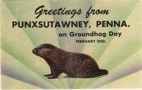 groundhog day legend 17 best images about groundhog day on