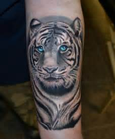 white tiger tattoo designs and ideas the tattoo editor