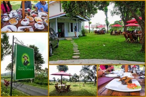 Teh Di Ndoro Donker sensasi ngeteh di tengah kebun teh satria yuda prasetyo