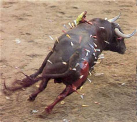 m 225 s crueldad el toro de san juan revolucion che quot el quot