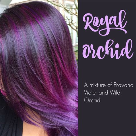 orchid hair color orchid hair clothing hair in 2018 orchid