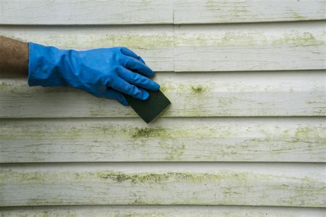 best way to clean vinyl siding on a house how to clean vinyl siding
