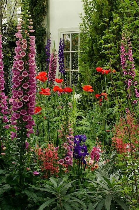 how to start a cottage garden summer backyard cottage with delphinium start a easy