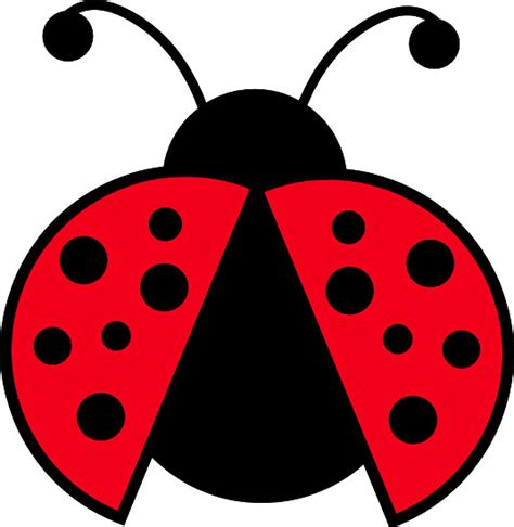 clipart graphics free free ladybug clipart cliparting