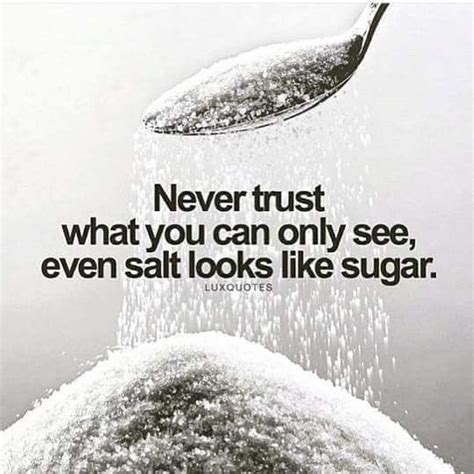 Like What You See by Don T Trust What You See Even Salt Looks Like Sugar