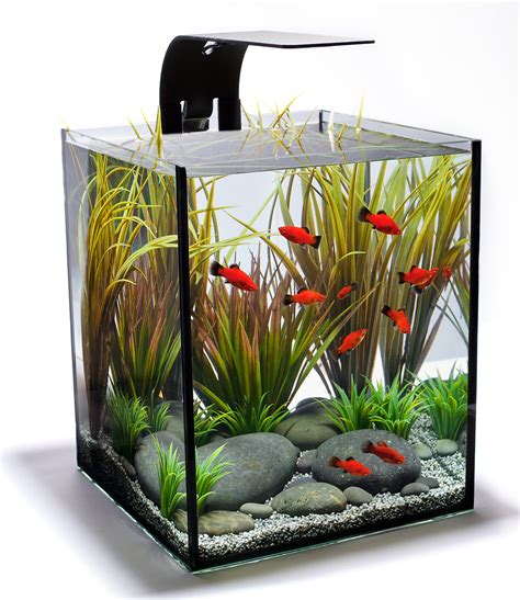 aquascape aquarium supplies aquarium design group an aquascape philosophy for a