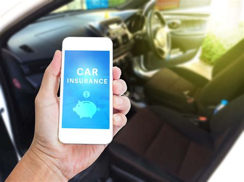 florida auto insurance requirements  vehicle owners