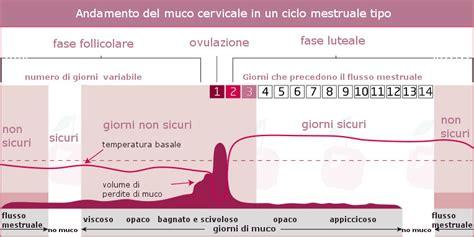 sensazione di bagnato prima ciclo mestruale evitare lo gravidanza con il metodo muco cervicale