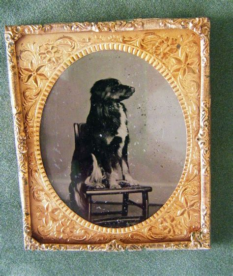 Antique For Sale by Sale Antique Tintype For Sale Antiques Classifieds