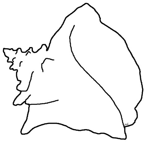 queen conch coloring page queen or pink conch coloring page seashells by millhill