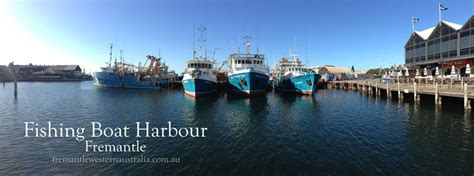 fremantle fishing boat harbour accommodation nightlife in australia browse info on nightlife in