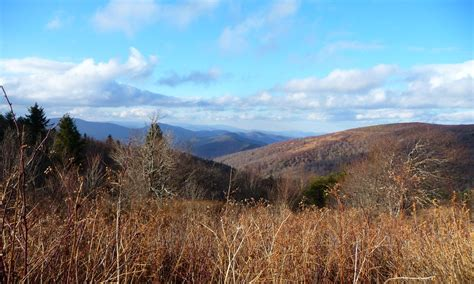 Black Balsam Knob To Cold Mountain by Trail To Cold Mountain From Shining Rock And Black Balsam