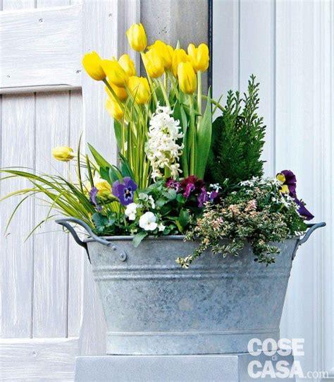 bulbi in vaso il mastello con bulbi e viole cose di casa