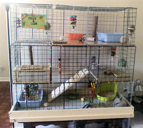 Some On The Go With The Rabbit Travel Vibe by 10 Diy Rabbit Cages And Hutches For Your Fluffy Friends