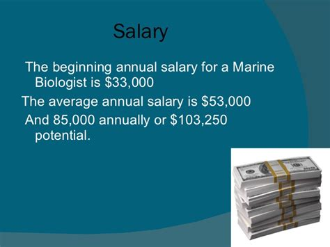 Description For A Marine Biologist by Marine Biologist Description The Career Of Marine Biology Pp 2003 Best 25 What Is Marine