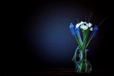 Light Vase Free Images Light Plant White Night Glass Vase