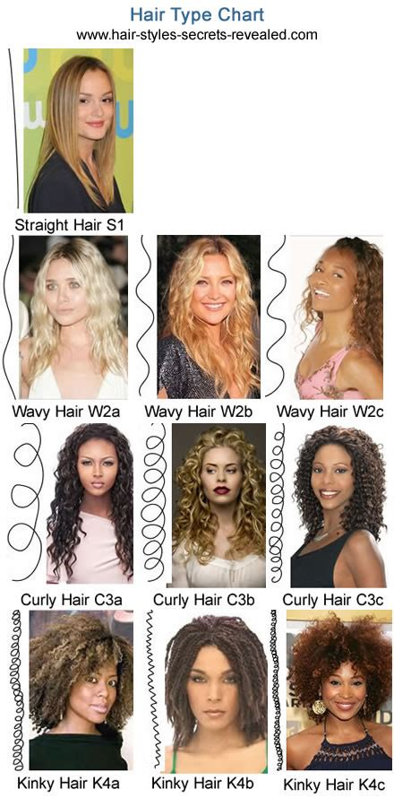 Hair Types Chart Hair by Different Hair Types What Is My Hair Type Chart