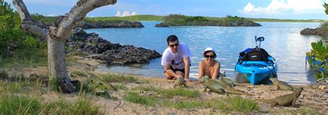 glass bottom boat tours tci activities 187 neptune villas turks and caicos las brisas
