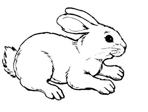 stuffed bunny coloring page 93 stuffed bunny coloring page coloring pages of