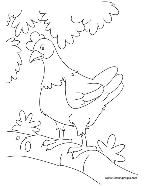little red hen coloring pages new calendar template site