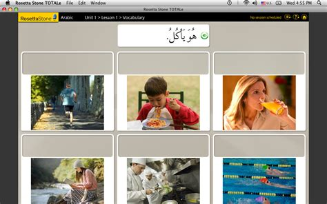 rosetta stone related keywords rosetta stone long tail image gallery rosetta software