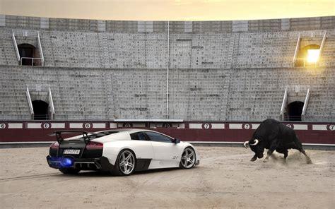 Lamborghini Car Names Bulls Luxury Cars Lamborghini Bull Wallpapers Hd Desktop And