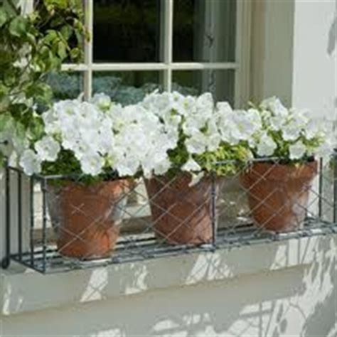 wire window box planter 1000 images about window flowers plants on