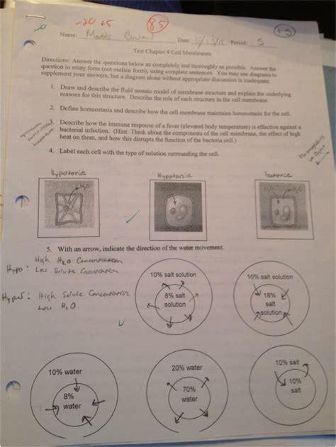 chapter 4 carbohydrates quiz molecules and membranes matt boward s aice biology portfolio