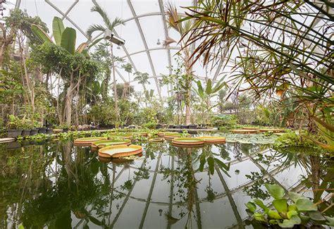 greenhouse   botanic garden university  aarhus