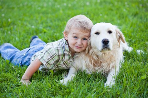 puppies and toddlers using service dogs to help with autism spectrum disorder