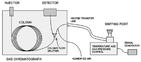gas chromatography research paper gas chromatography research paper applications of gas
