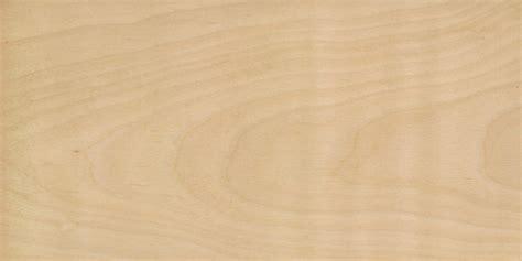 birch color wood species