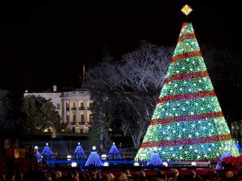 christmas trees aglow around the world