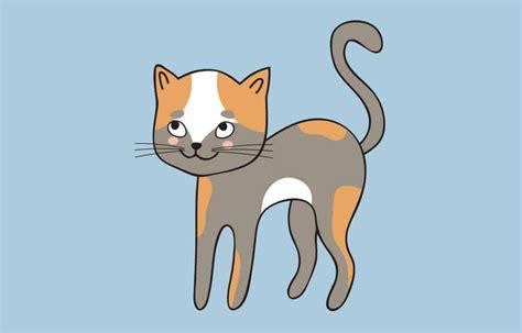 gambar kucing kartun berwarna  imut  lucu