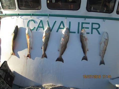 galveston party boats inc reviews galveston party boats inc home facebook